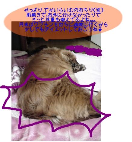 らいむのおちり.jpg