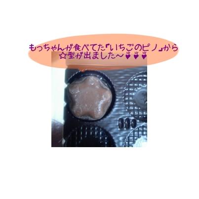 星型ピノ.jpg