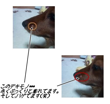 らいむのデキモノ.jpg